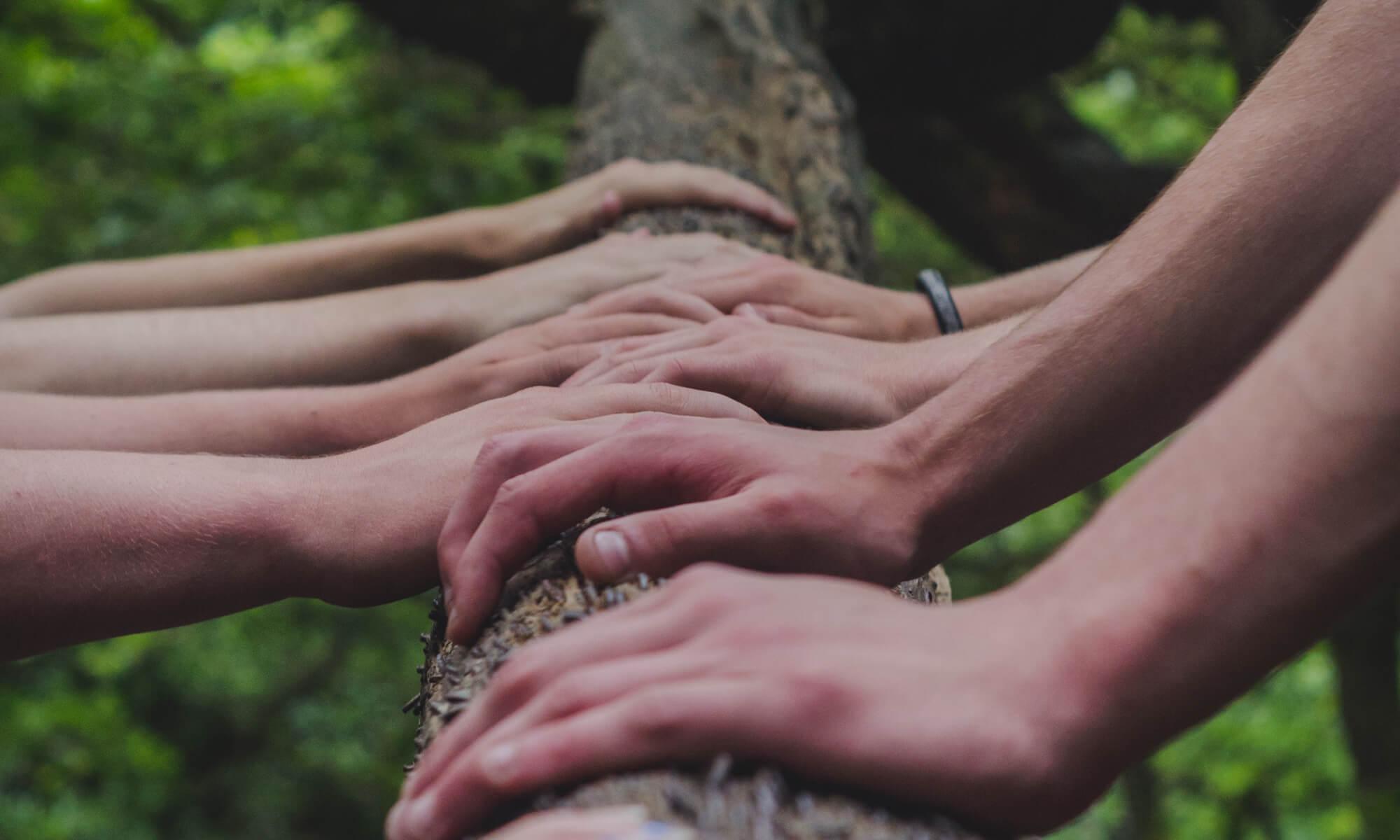 Entrenamiento en Cultivo de la Compasión